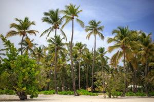 Пляж Cap Cana